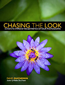 Chasing The Look. 10 Ways to Improve The Aesthetics of Your Photographs by David duChemin