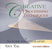 Creative Processing Techniques by Guy Tal