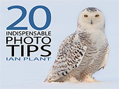 FREE - Twenty Photos. Twenty Indispensable Tips. by Ian Plant