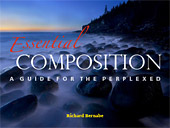 Essential Composition. A Guide for the Perplexed by Richard Bernabe