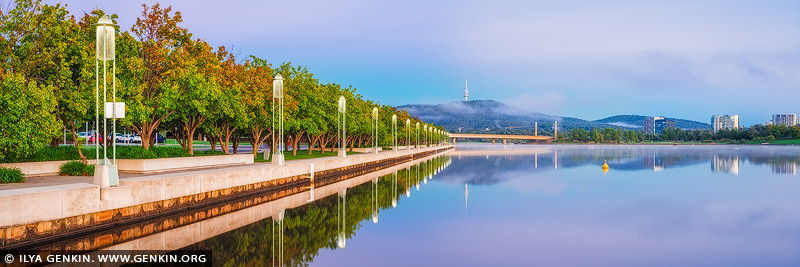 australia stock photography | Lake Burley Griffin with Commonwealth Avenue Bridge and Telstra Tower, Canberra, ACT, Australia, Image ID AU-ACT-CANBERRA-0003