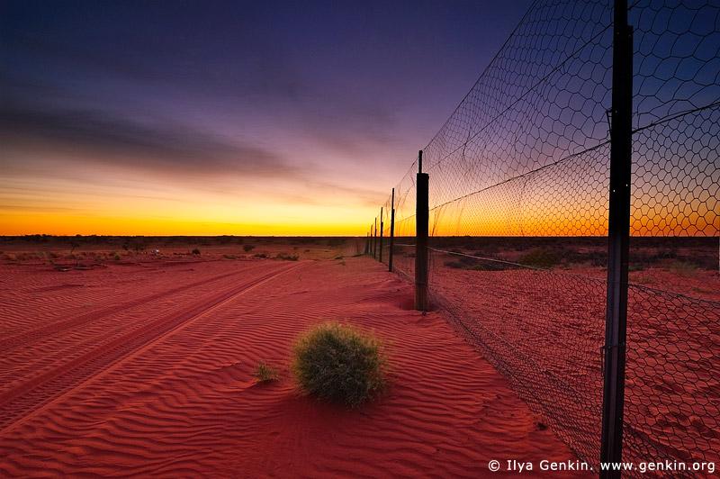 australia stock photography | Dingo Fence near Cameron Corner at Sunrise, Cameron Corner, NSW/QLD/SA, Australia, Image ID CAMERON-CORNER-NSW-QLD-SA-0003