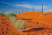 australia stock photography | Dingo Fence near Cameron Corner, Cameron Corner, NSW/QLD/SA, Australia, Image ID CAMERON-CORNER-NSW-QLD-SA-0007.