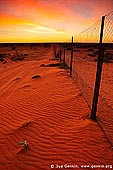 australia stock photography | Dingo Fence near Cameron Corner at Sunrise, Cameron Corner, NSW/QLD/SA, Australia, Image ID CAMERON-CORNER-NSW-QLD-SA-0008.