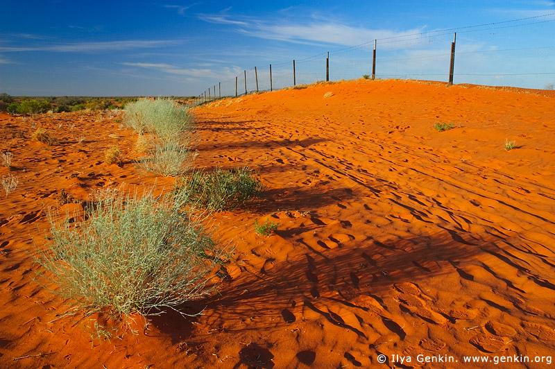 australia stock photography | Dingo Fence near Cameron Corner, Cameron Corner, NSW/QLD/SA, Australia, Image ID CAMERON-CORNER-NSW-QLD-SA-0016