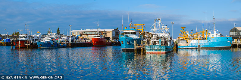 australia stock photography | Fishermans' Boats in Success Boat Harbour, Fremantle, Perth, WA, Australia, Image ID AU-PERTH-0004