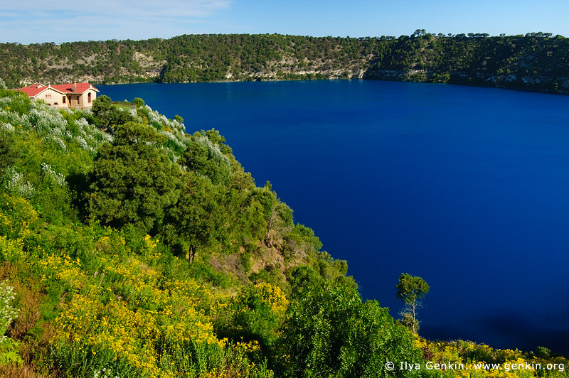 australia stock photography | The Blue Lake, Mount Gambier, South Australia (SA), Australia, Image ID AU-MOUNT-GAMBIER-0014