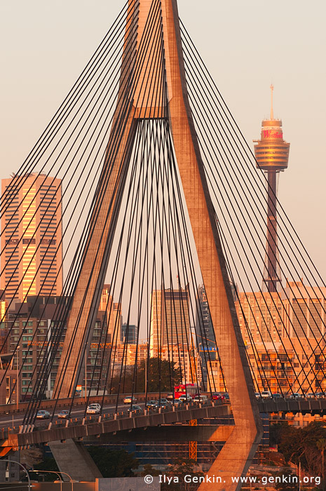 australia stock photography | Anzac Bridge and Sydney Tower at Sunset, Glebe, Sydney, NSW, Australia, Image ID AU-SYDNEY-ANZAC-BRIDGE-0007