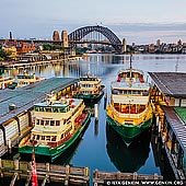australia stock photography | Harbour Bridge and Circular Quay Early in the Morning, Sydney, New South Wales (NSW), Australia, Image ID AU-SYDNEY-CIRCULAR-QUAY-0015. The Cahill Expressway is one of the popular places to watch The Harbour Bridge as it is close to all other tourist attractions and especially close to the Circular Quay, major Sydney transport hub, with a large ferry, rail and bus interchange. It's especially beautiful early in the morning or late in the evening.