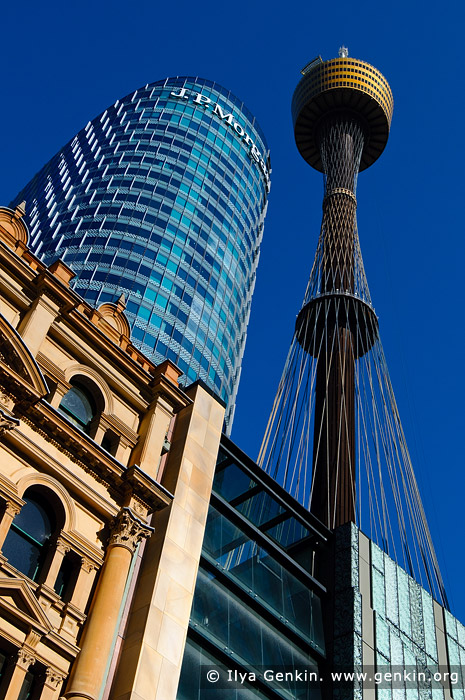 australia stock photography | Sydney Tower from Pitt Street Mall, Sydney, NSW, Australia