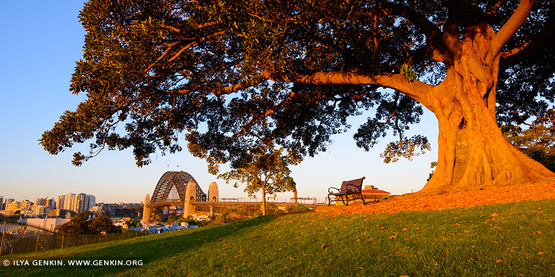 australia stock photography | Sunset at Observatory Hill, Sydney, New South Wales (NSW), Australia
