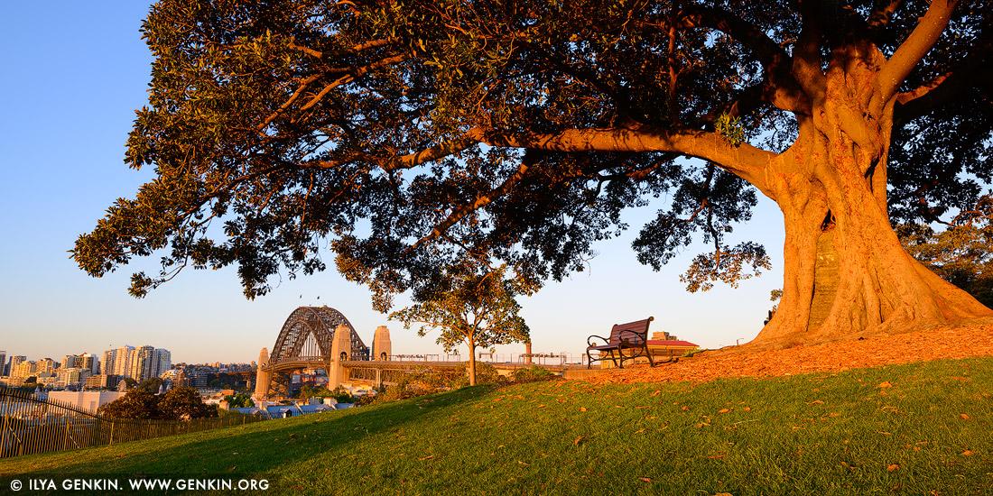 observatory hill sydney australia - photo#29