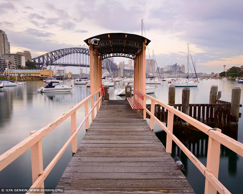 australia stock photography | Lavender Bay Wharf at Dawn, McMahons Point, Sydney, NSW, Australia, Image ID AU-SYDNEY-0025