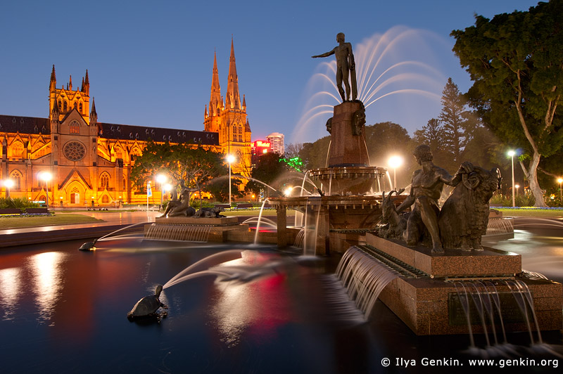 australia stock photography | Archibald Fountain at Night, Hyde Park, Sydney, NSW, Australia, Image ID AU-SYDNEY-HYDE-PARK-0003