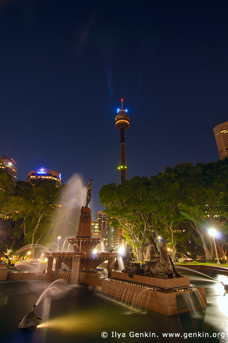australia stock photography | Archibald Fountain and Sydney Tower at Night, Hyde Park, Sydney, NSW, Australia, Image ID AU-SYDNEY-HYDE-PARK-0004