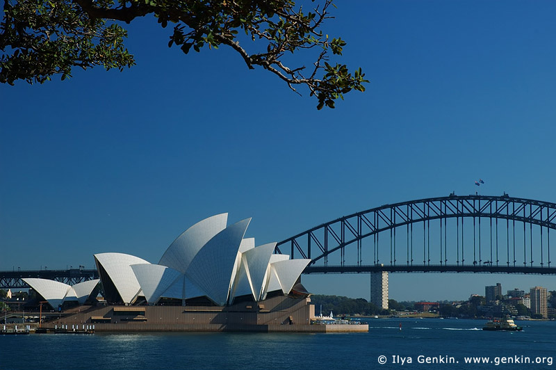 australia stock photography | The Sydney Opera House and The Harbour Bridge, View from Mrs. Macquaries Chair, Sydney, New South Wales, Australia, Image ID AUOH0005