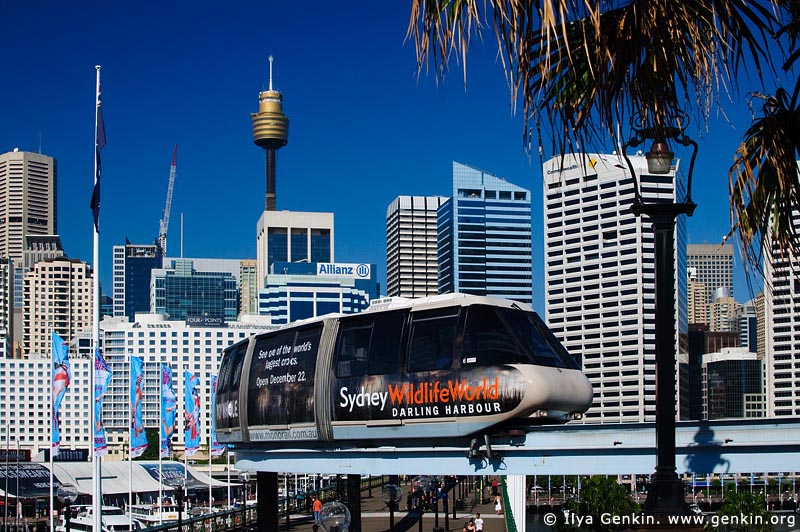 australia stock photography | Sydney City and Monorail, Darling Harbour, Sydney, New South Wales (NSW), Australia, Image ID AU-SYDNEY-MONORAIL-0005