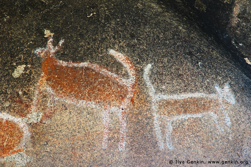 australia stock photography | Aboriginal Rock Art Paintings at Bunjil's Shelter, Stawell, Victoria (VIC), Australia, Image ID BUNJIL-SHELTER-0003