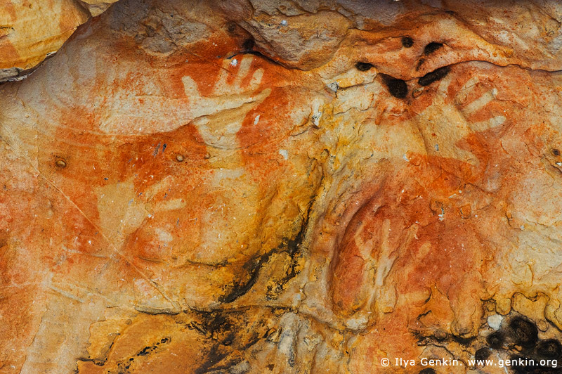 australia stock photography | Aboriginal Rock Art Paintings at Ngamadjidj Shelter, Grampians National Park, Victoria (VIC), Australia, Image ID NGAMADJIDI-SHELTER-0003