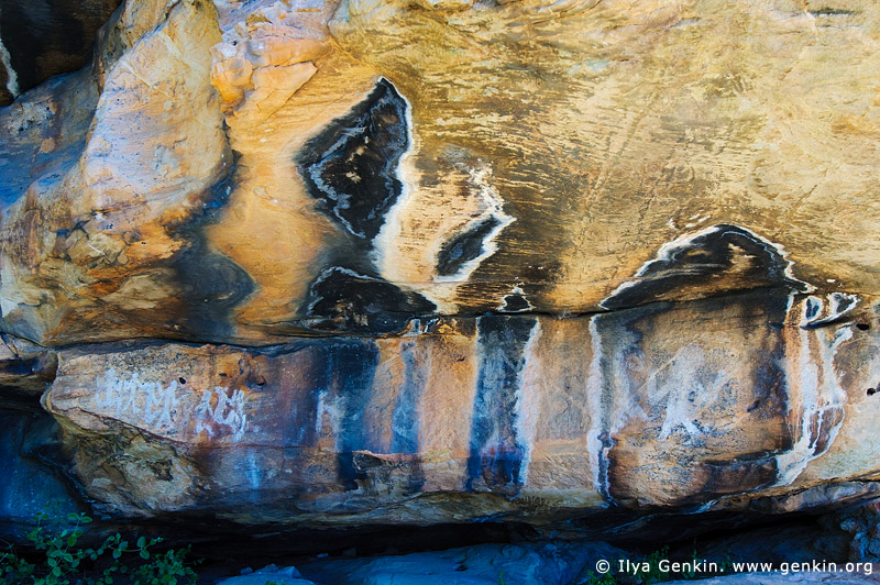 australia stock photography | Aboriginal Rock Art Paintings at Ngamadjidj Shelter, Grampians National Park, Victoria (VIC), Australia, Image ID NGAMADJIDI-SHELTER-0008