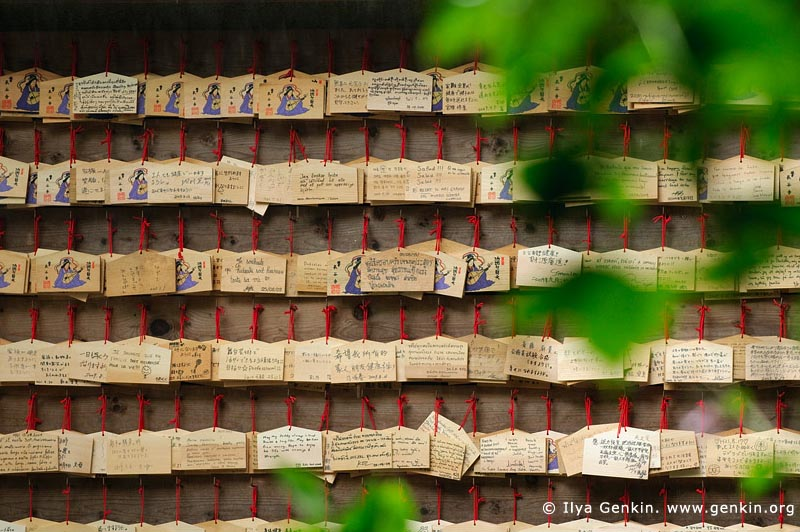 japan stock photography | Ema, Prayer Tablets, at Kaikozan Hase-dera Temple, Kaikozan Hase-dera Temple, Kamakura, Honshu, Japan
