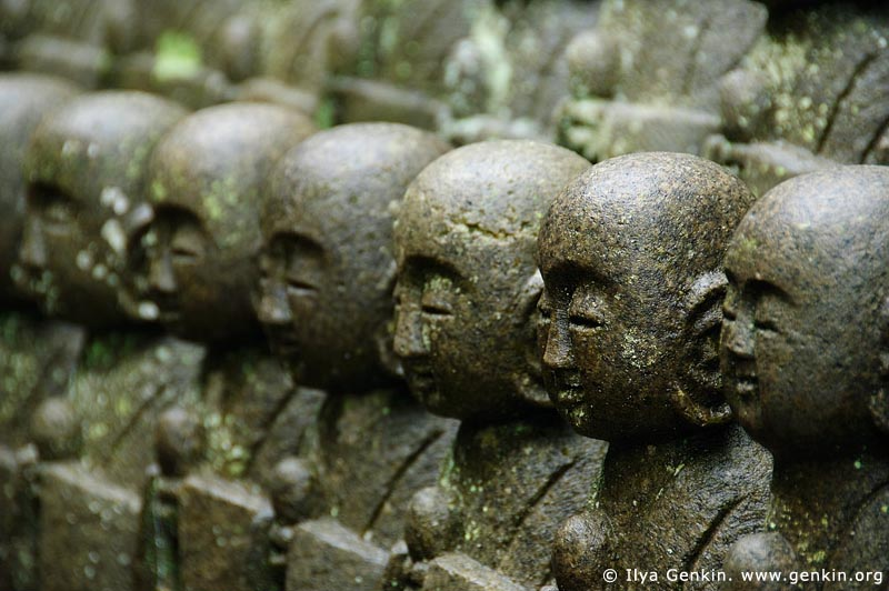 japan stock photography | 1000 Statues of Jizo, Kaikozan Hase-dera Temple, Kaikozan Hase-dera Temple, Kamakura, Honshu, Japan, Image ID JP-KAMAKURA-0034