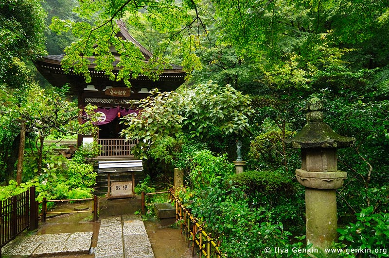 japan stock photography | Engaku-ji Temple in Kamakura, Engaku-ji Temple, Kamakura, Honshu, Japan, Image ID JP-KAMAKURA-0082