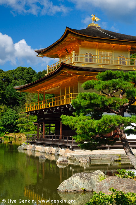 japan stock photography | Golden Pavilion, Kyoto, Kansai, Honshu, Japan, Image ID JP-KYOTO-0008