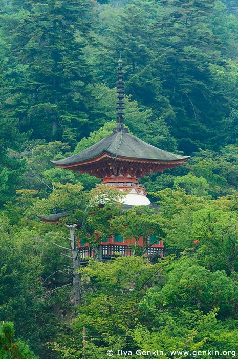 japan stock photography | Tahoto Pagoda, Miyajima, Honshu, Japan, Image ID JPMI0011