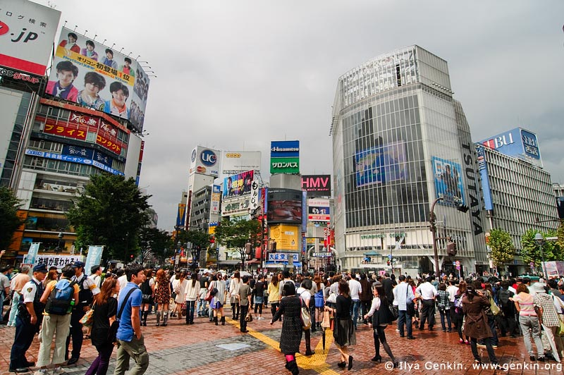 japan stock photography | Shibuya, The Busiest Intersection in the World, Shibuya, Tokyo, Kanto Region, Honshu Island, Japan, Image ID JP-TOKYO-0030
