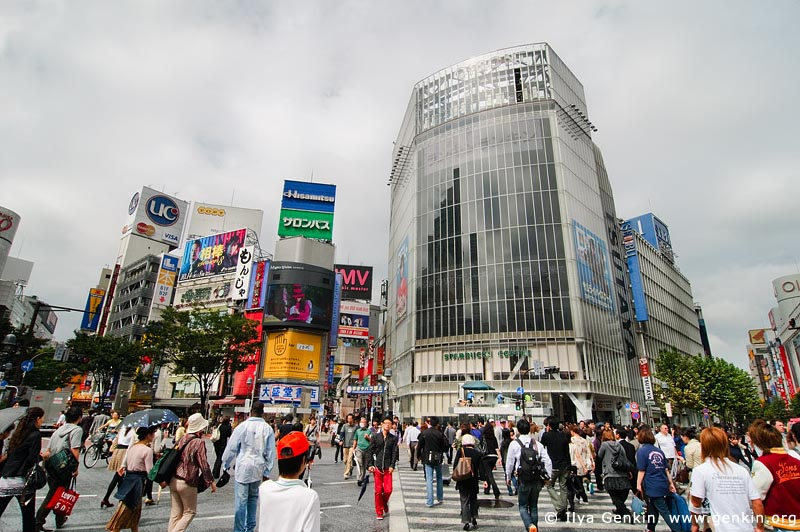 japan stock photography | Shibuya, The Busiest Intersection in the World, Shibuya, Tokyo, Kanto Region, Honshu Island, Japan, Image ID JP-TOKYO-0031
