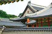 korea stock photography | Roofs at Changdeokgung Palace in Seoul, South Korea, Jongno-gu, Seoul, South Korea, Image ID KR-SEOUL-CHANGDEOKGUNG-0008.