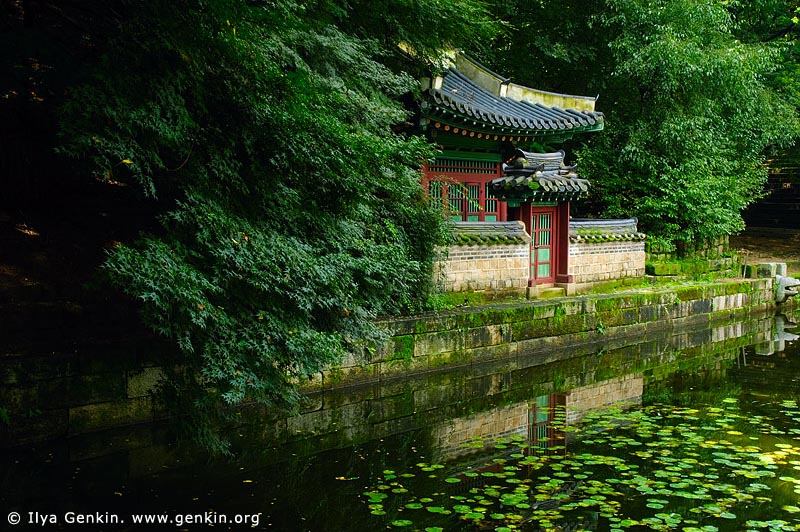 korea stock photography | Buyeongji Pond at Changdeokgung Palace in Seoul, South Korea, Jongno-gu, Seoul, South Korea, Image ID KR-SEOUL-CHANGDEOKGUNG-0017