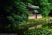 korea stock photography | Buyeongji Pond at Changdeokgung Palace in Seoul, South Korea, Jongno-gu, Seoul, South Korea, Image ID KR-SEOUL-CHANGDEOKGUNG-0017.