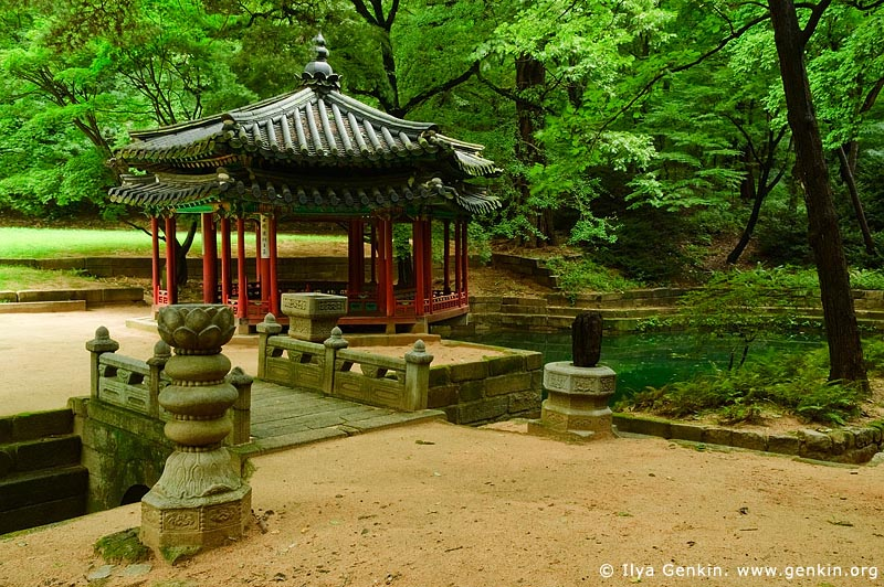 korea stock photography | Jondeokjeong Pavilion at Changdeokgung Palace in Seoul, South Korea, Jongno-gu, Seoul, South Korea, Image ID KR-SEOUL-CHANGDEOKGUNG-0020