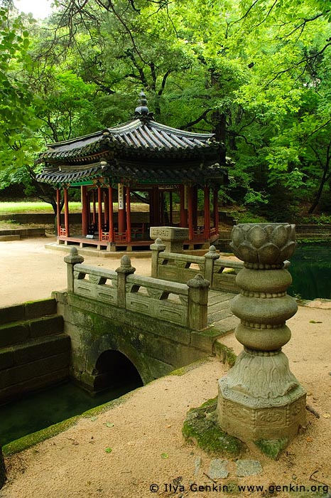 korea stock photography   Jondeokjeong Pavilion at Changdeokgung Palace in Seoul, South Korea, Jongno-gu, Seoul, South Korea, Image ID KR-SEOUL-CHANGDEOKGUNG-0021