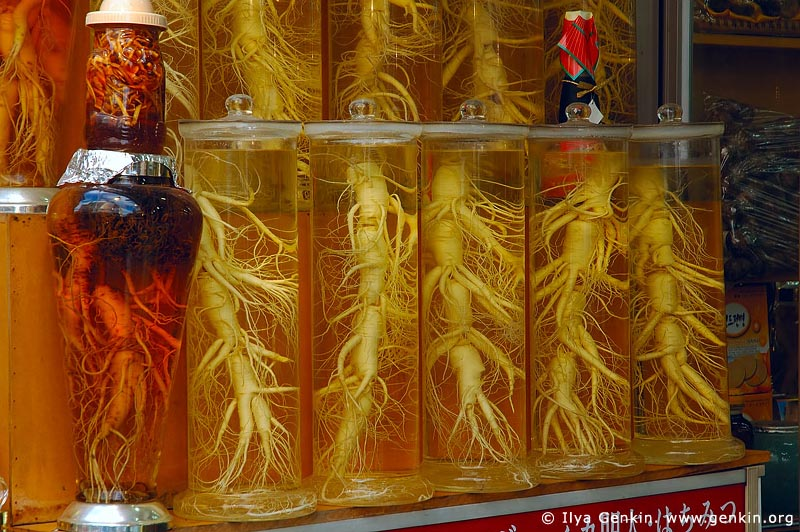 korea stock photography | Ginseng Roots in Bottles in Namdaemun Market in Seoul, South Korea, Seoul, South Korea, Image ID KR-SEOUL-0017