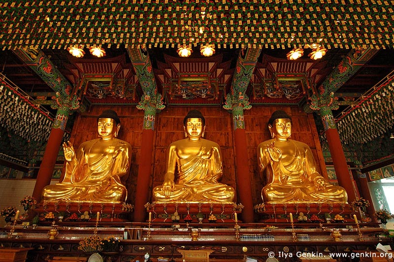 korea stock photography | Three Golden Buddha Statues Inside Jogyesa Temple in Seoul, South Korea, Gyeonji-dong, Jongno-gu, Seoul, South Korea, Image ID KR-SEOUL-JOGYESA-0007