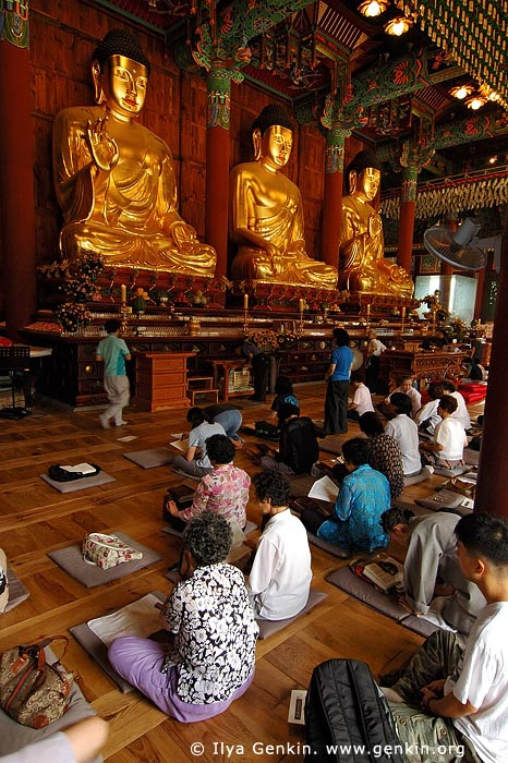 korea stock photography   In Prayer for Buddha Inside Jogyesa Temple in Seoul, South Korea, Gyeonji-dong, Jongno-gu, Seoul, South Korea, Image ID KR-SEOUL-JOGYESA-0011