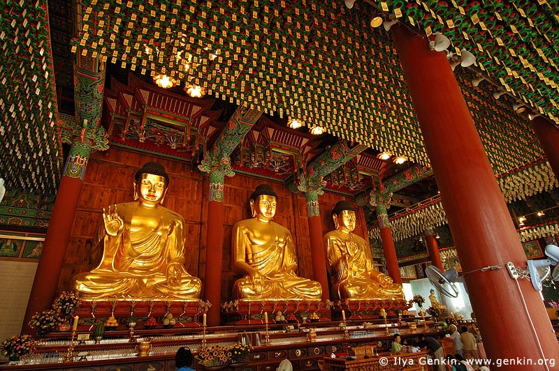 three golden buddha statues inside jogyesa temple in seoul. Black Bedroom Furniture Sets. Home Design Ideas