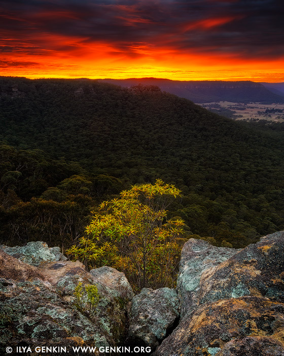 landscapes stock photography | Hartley Vale From Hassans Walls at Sunrise, Lithgow, Blue Mountains, New South Wales (NSW), Australia, Image ID AU-HASSANS-WALLS-0003