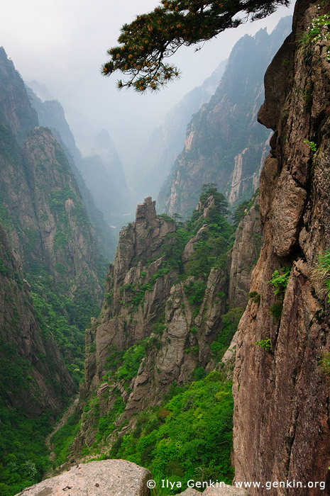 landscapes stock photography | Looking Down Xihai (West Sea) Grand Canyon, Echo Wall Lookout, Baiyun Scenic Area, Huangshan (Yellow Mountains), China, Image ID CHINA-HUANGSHAN-0013
