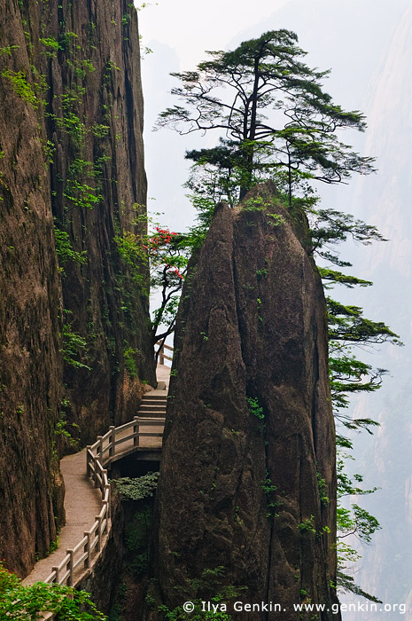 landscapes stock photography | Stone Path in Xihai (West Sea) Grand Canyon, Huangshan (Yellow Mountains), China, Image ID CHINA-HUANGSHAN-0029