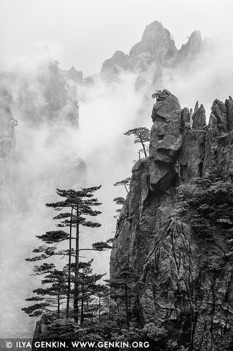 landscapes stock photography | Huangshan Mountains in Clouds, Xihai (West Sea) Grand Canyon, Baiyun Scenic Area, Huangshan (Yellow Mountains), China, Image ID CHINA-HUANGSHAN-0033
