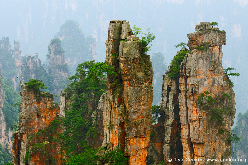 landscapes stock photography | Stone Pillars in Zhangjiajie, Tianzi Mountain Nature Reserve, Zhangjiajie National Park, Hunan, China, Image ID CHINA-WULINGYUAN-ZHANGJIAJIE-0001