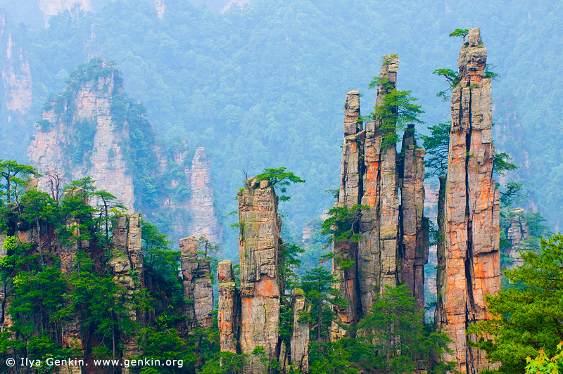 landscapes stock photography | Imperial Emperor's Writing Brush Peak, Tianzi Mountain Nature Reserve, Zhangjiajie National Park, Hunan, China, Image ID CHINA-WULINGYUAN-ZHANGJIAJIE-0004