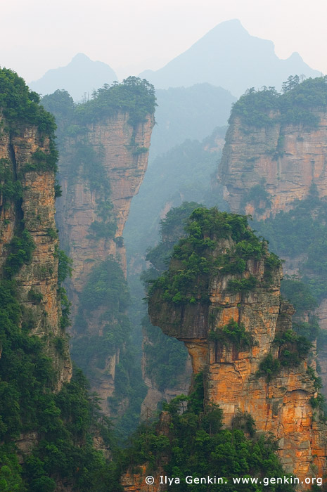 landscapes stock photography | Mountains in Wulingyuan Scenic Area, Zhangjiajie National Park, Hunan, China, Image ID CHINA-WULINGYUAN-ZHANGJIAJIE-0005