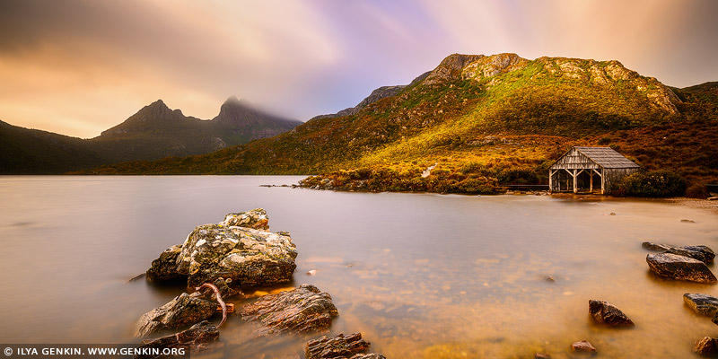 landscapes stock photography | Sunrise at Lake Dove Boat Shed, Cradle Mountain National Park, Tasmania, Australia, Image ID CRADLE-MOUNTAIN-LAKE-DOVE-TAS-0005