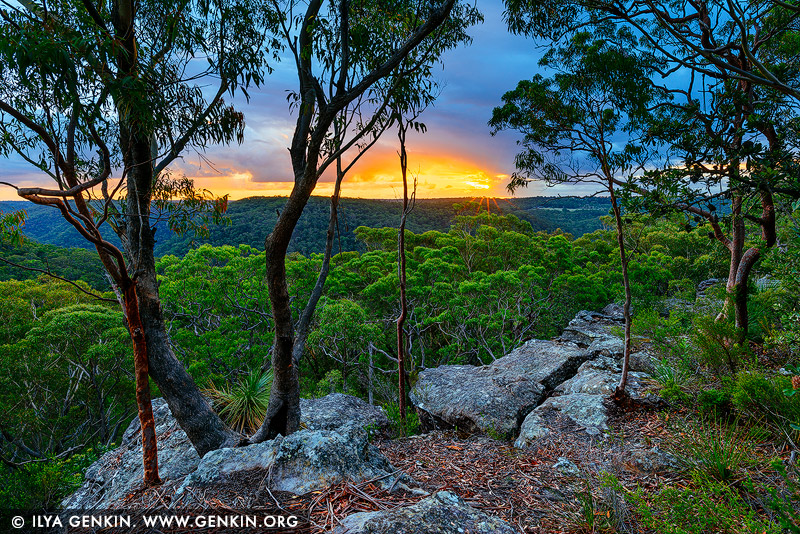 landscapes stock photography | Sunset at Currawong Lookout, Berowra Valley National Park, Hornsby Shire, NSW, Australia, Image ID AU-BEROWRA-CURRAWONG-LOOKOUT-0001
