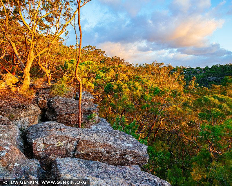 landscapes stock photography | Sunset at Currawong Lookout, Berowra Valley National Park, Hornsby Shire, NSW, Australia, Image ID AU-BEROWRA-CURRAWONG-LOOKOUT-0002